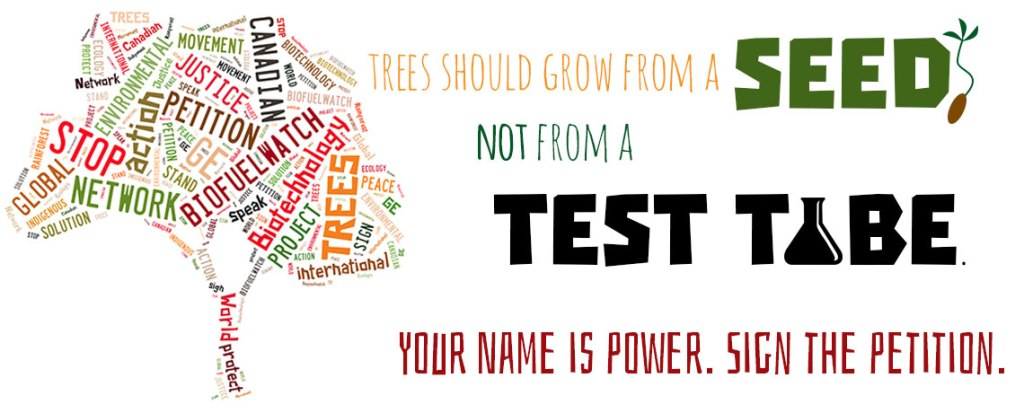 10 Reasons to Sign the USDA Petition to Ban GE Trees
