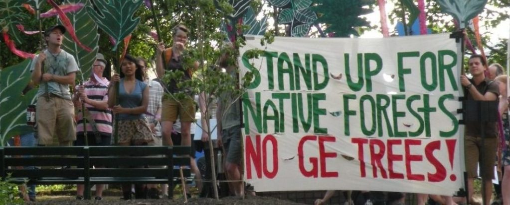 Asunción Declaration Rejects GE Trees:  The Global Movement Grows