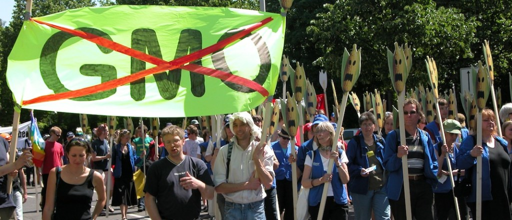 300 Scientists say no consensus on safety of GMOs