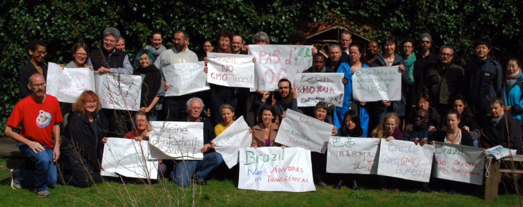Growing Movement Against GMO Trees Protests Globally at Brazilian Embassies and Consulates For the Second Week