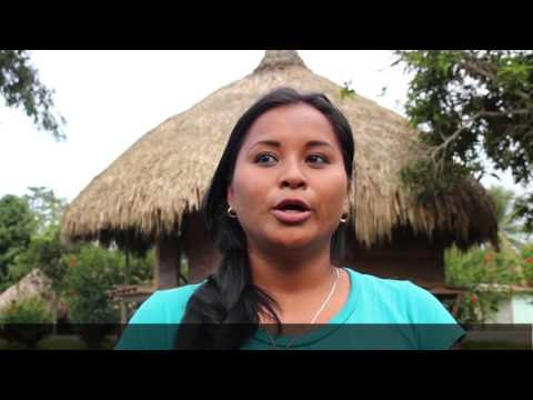 """WATCH: """"Forests: The Green Gold of Panama's Indigenous Peoples"""""""