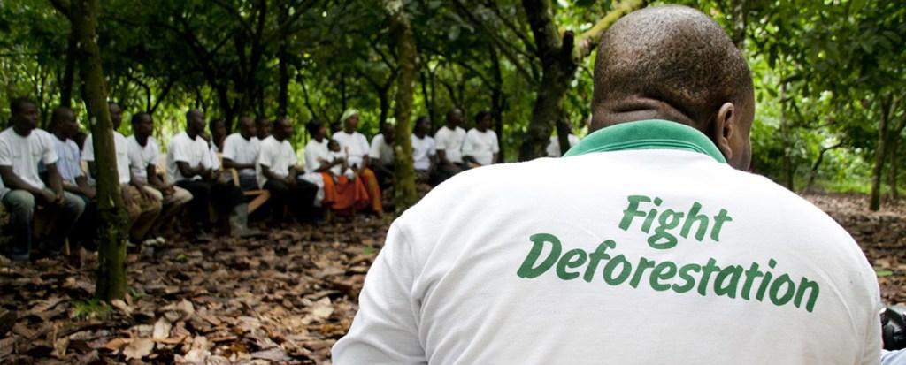 Deforestation: An Emissions Triple-Whammy
