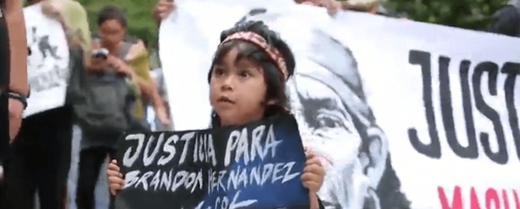 Chile's Indigenous Mapuche Protest Deadly Police Brutality