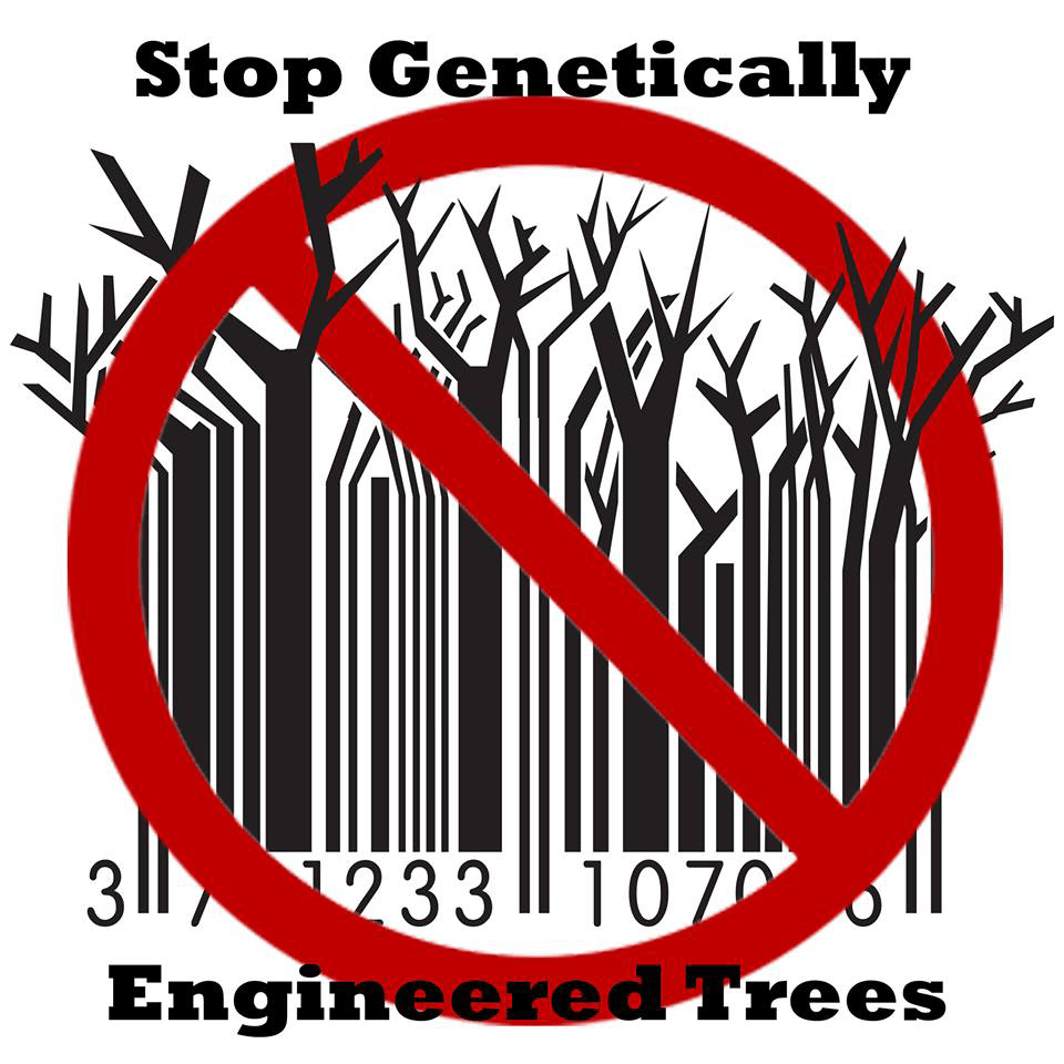 Global Gathering Takes Aim at Genetically Engineered Trees