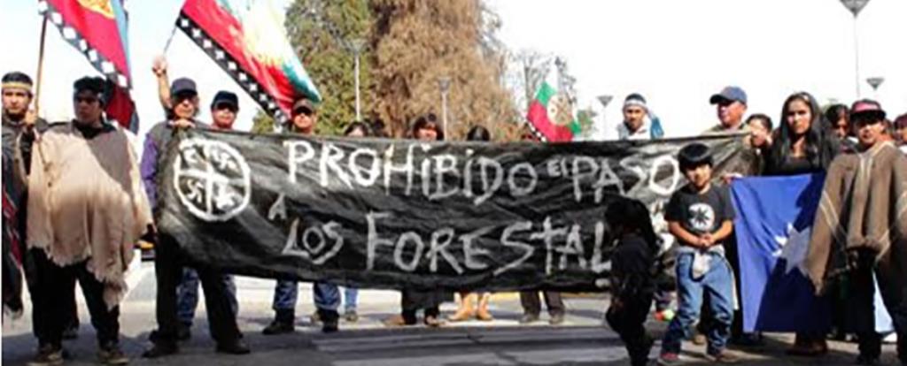 Conflicto Forestal y Violencia Hacia la Infancia Mapuche