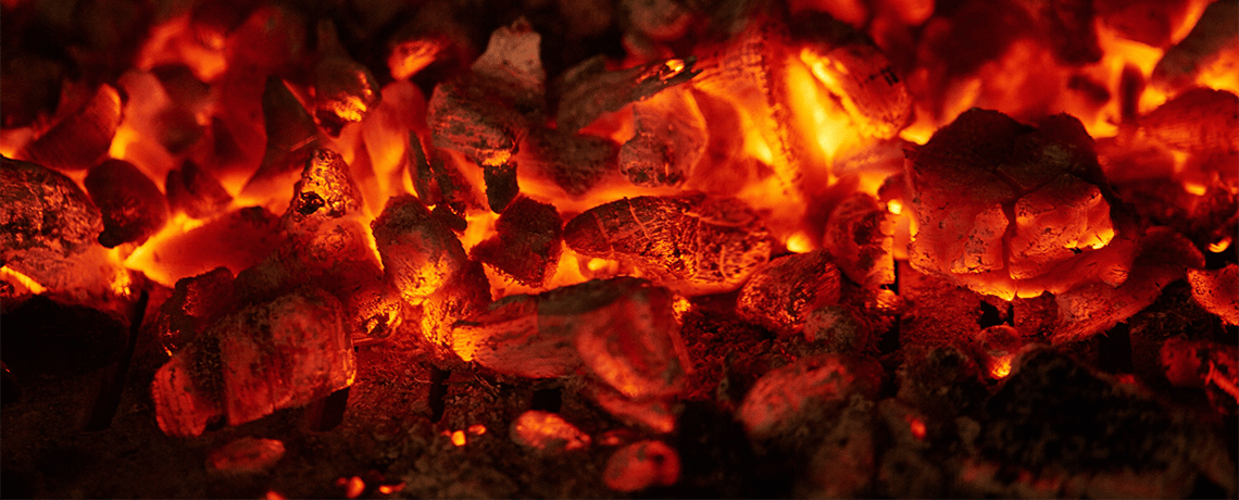 Barbecue Charcoal Contributing to Disappearance of Tropical Forests