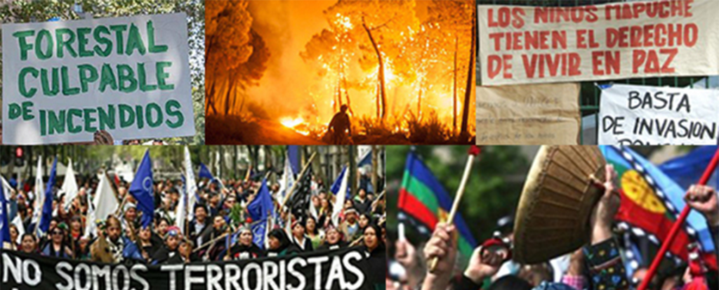 Chile: Mega Forest Fires, Corporate Crime and Impunity