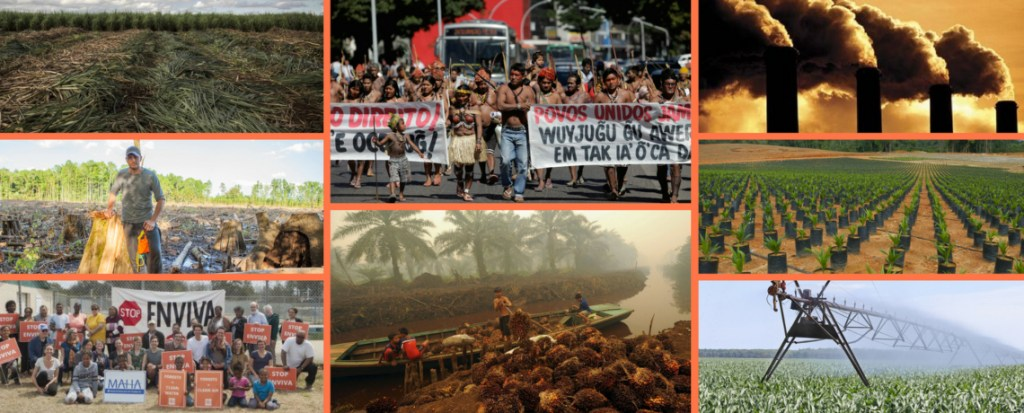 The Dark Side of the Bioeconomy: Climate Catastrophe, Forest Destruction, and Human Rights Abuses