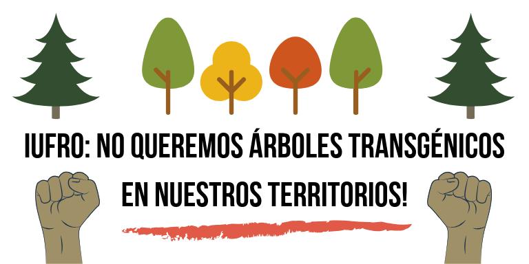 Una campaña global evidencia el rechazo mundial a los árboles transgénicos mientras se celebra la Conferencia Internacional de Biotecnologíade los Árboles en Carolina del Norte