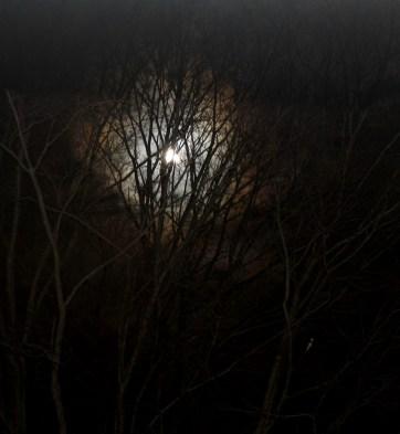 Moon One