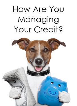 creditmanage
