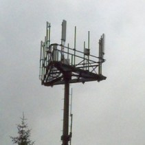 An ACS and GCI-shared cell tower. (Photo: Rosemarie Alexander)