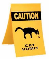 Cats - Vomit caution