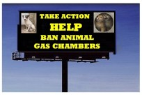 Homeless pets - Kill billboard help ban animal gas chambers