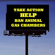 Homeless Pets - Kill billboard take action