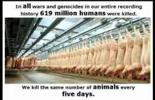 Message - Holocaust numbers killed per five days same as all wars