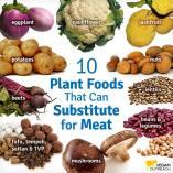 Vegan - foods protein substitutes