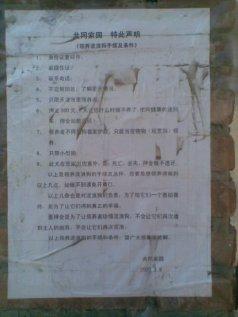 Yang's shelter set 2 09