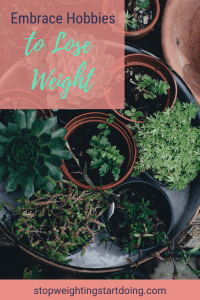 Succulents and herbs in flower pots. Embrace hobbies to lose weight.