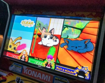 Taunt the Kittens in weird japanese arcade XD