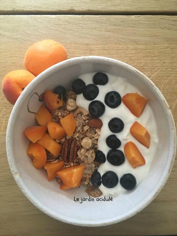granola homemade 1