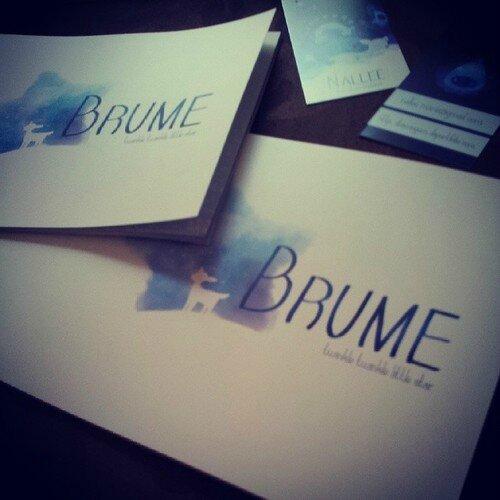 brume1