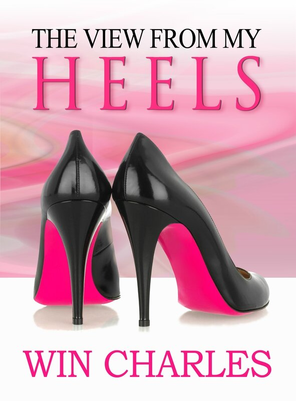 2-27-15 FINAL FRONT ONLY book cover View From My Heels JPEG