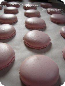 Macarons_tagada_001