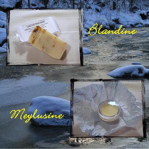 swap_hiver_blandine_modifi__1
