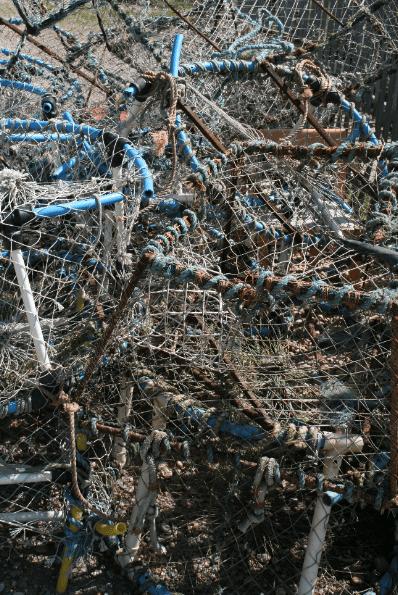 Image 34