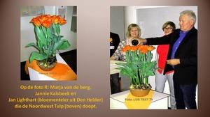 Noordwest tulp gedoopt in ziekenhuis