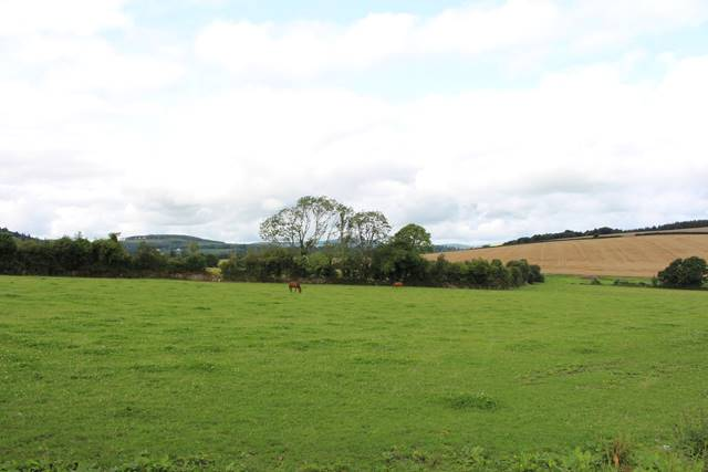 Hillbrook, Tinahely, Co. Wicklow