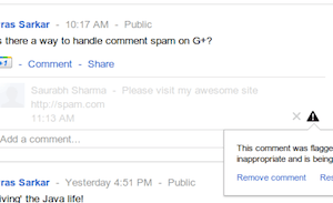 Google+ spam moderation system