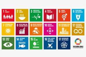 SDGsで高校生にできる11のこと