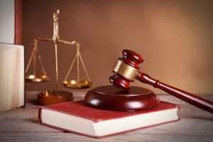 法学部とは?向いている人や進路、大学選びのポイント