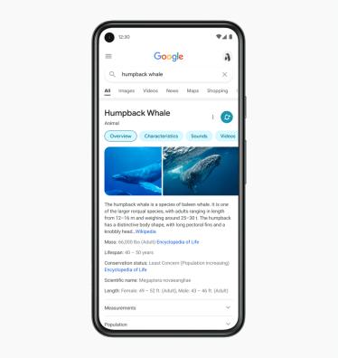 Google móveis