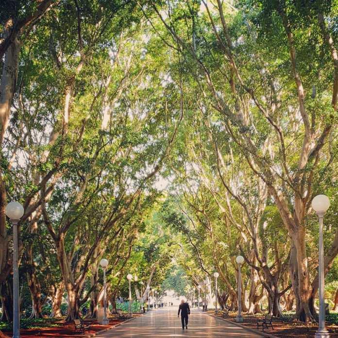 30 places to visit Sydney