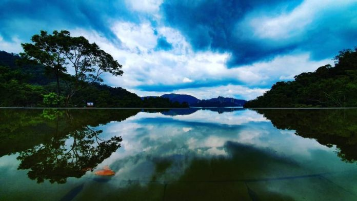 cánh rừng xanh mướt bên hồ
