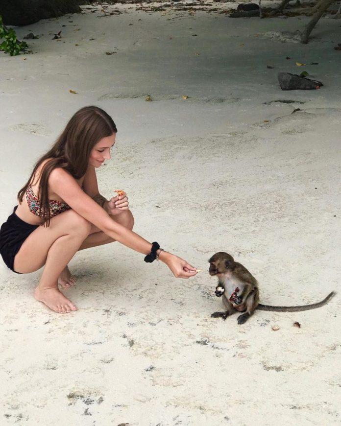 monkey beach thái lan