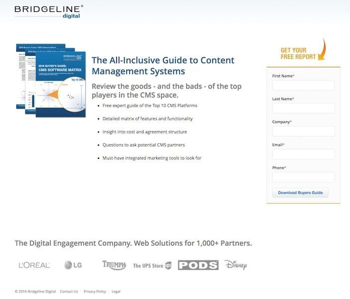 This picture shows marketers why Bridgeline Digital has one of the best landing pages you'll find online.