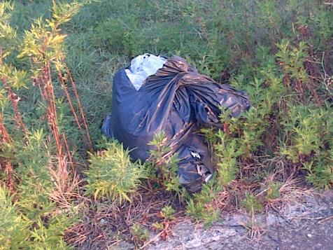 Foto S1-immondizia abbandonata lto ovest vai Patrone 3.9.15 ore 07.10