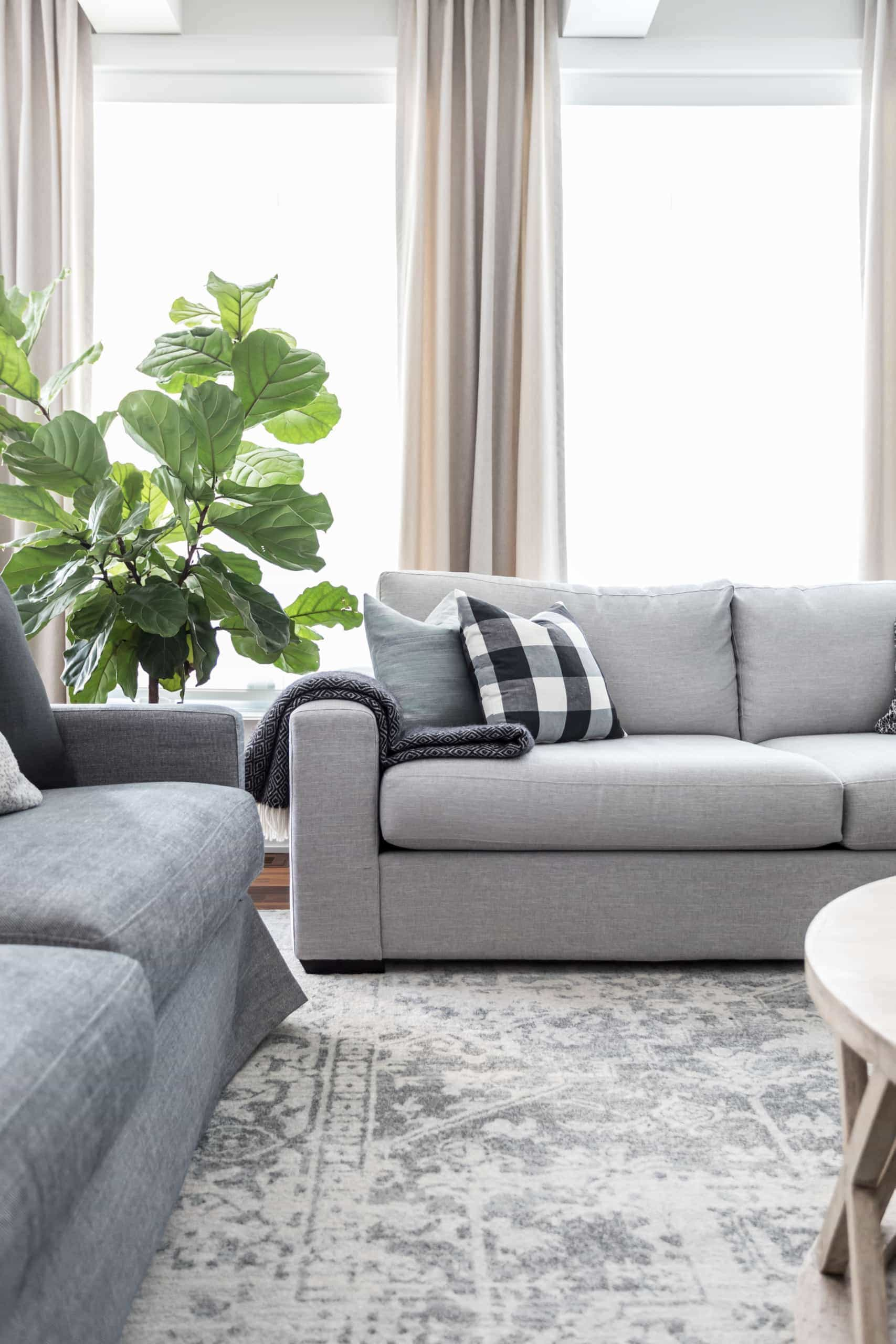 Couch near bright windows inside living room