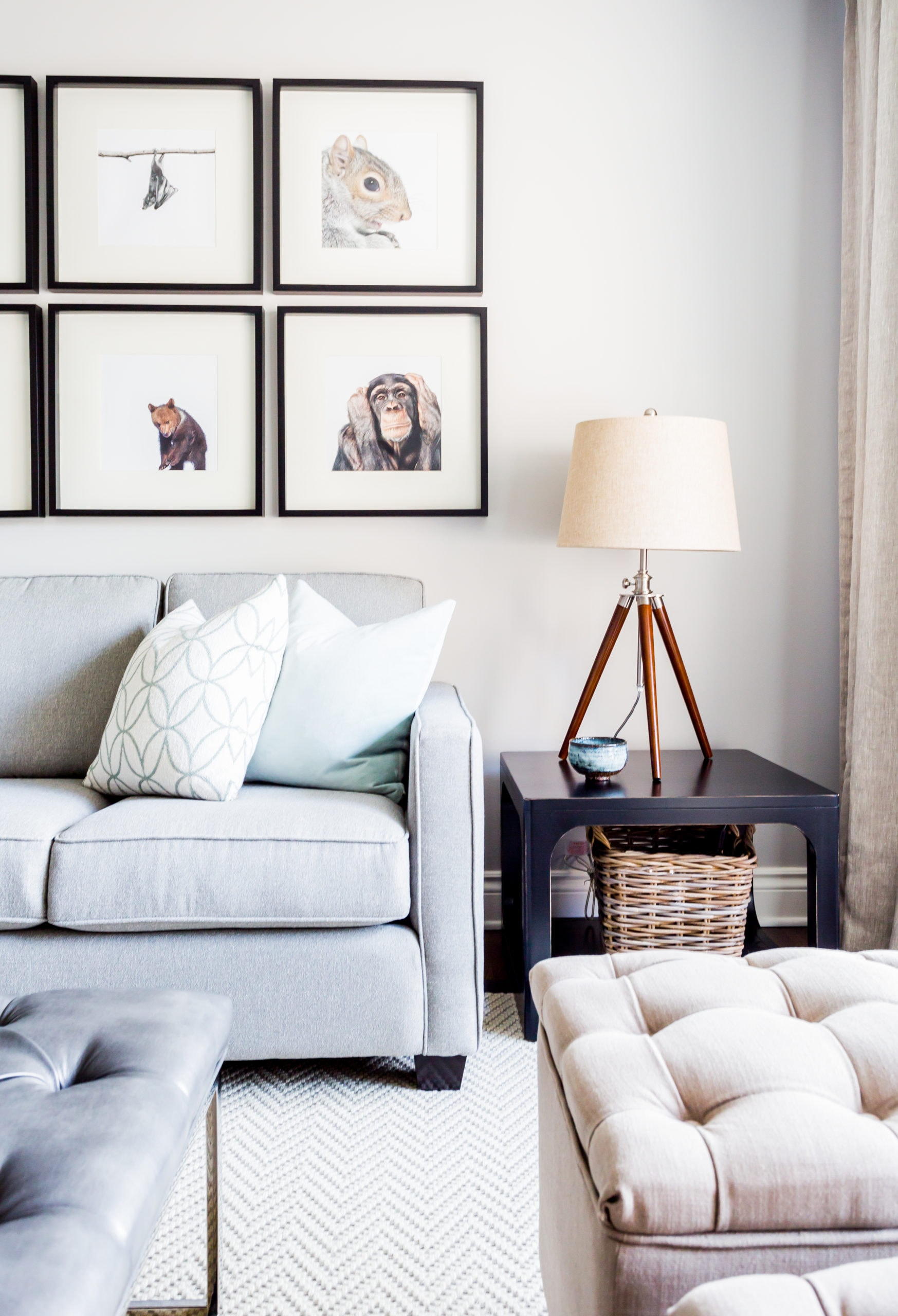 Living room containing various pictures of animals on the wall