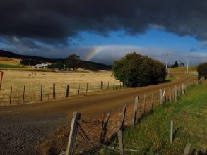 A distant bright rainbow_Note strong contrast between dark cloud and bright sky, and the direction of shadows