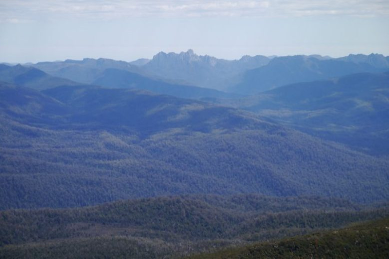 The quartzite Arthur Ranges are clearly visible to the west of the Hartz Mountains National Park