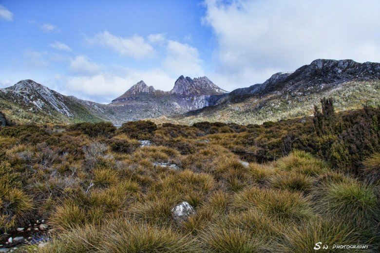 Cradle Mountain (24)
