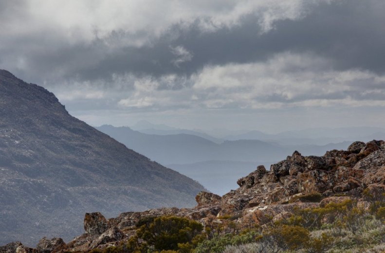 View north from Mt Field NP - by Angus Munro