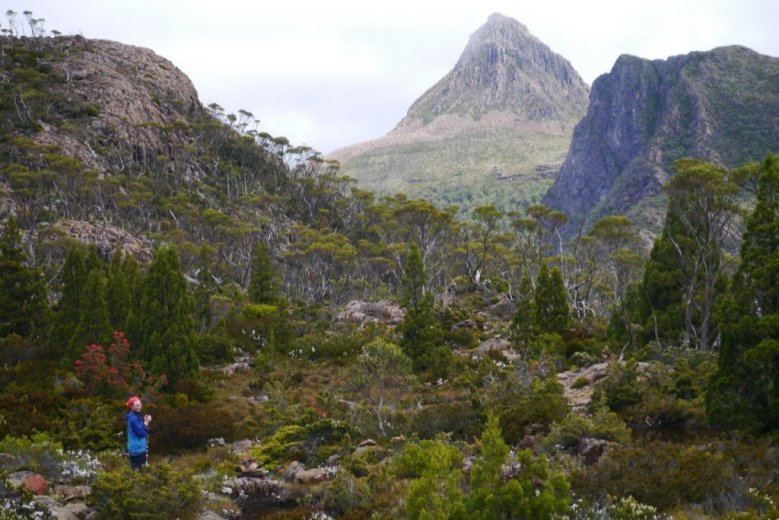 The high Tasmanian mountains, on the Overland Track