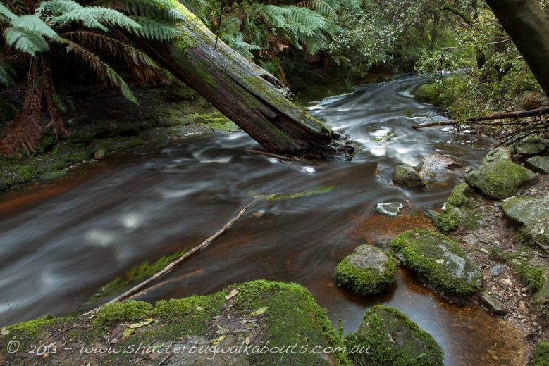 Moutain stream-Snug Falls runoff-Snug- by Shutterbug Walkabouts