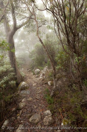 Organ Pipes track-Wellington Park-Mt Wellington- by Shutterbug Walkabouts